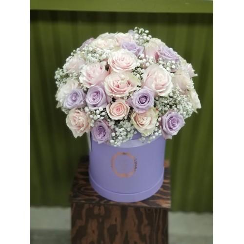 Purple Box