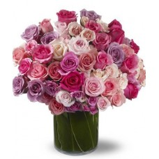A Rich Mix of Roses
